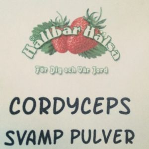 coryceps svamp