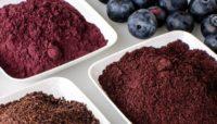 blue berries powder